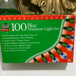Yule Rite Indoor/Outdoor 100 Blue Mini Lights